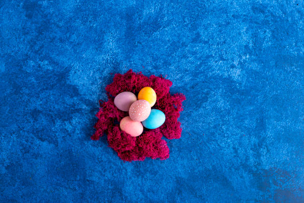 Decorative easter eggs in red nest on dark blue background holiday picture id1215092954?b=1&k=6&m=1215092954&s=612x612&w=0&h=iu2ifuxvrp8xqbgb581pkyg95nle3pgtbufo8wcgsci=
