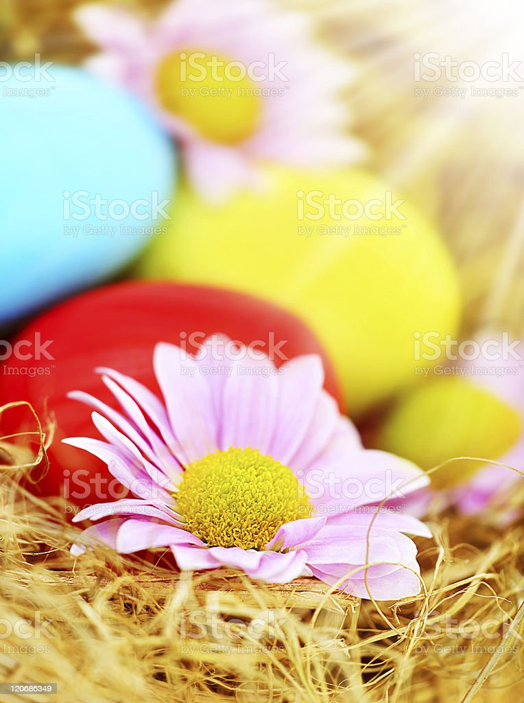 Decorative Easter eggs royalty-free stock photo