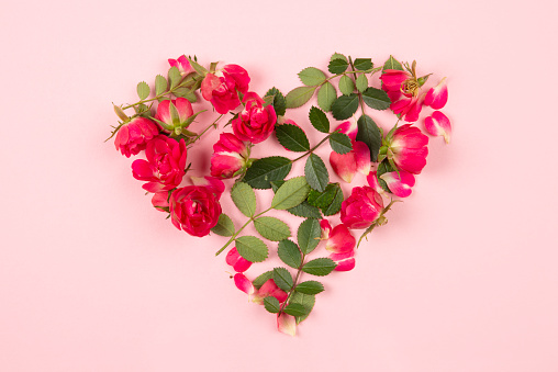 Decorative floral heart of roses and leaves on pink background