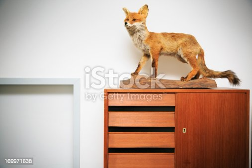 a decorative fox on top of a wardrobe. this photo was taken during the