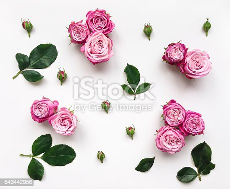 istock Decorative frame with pink bright roses and leaves 543442956