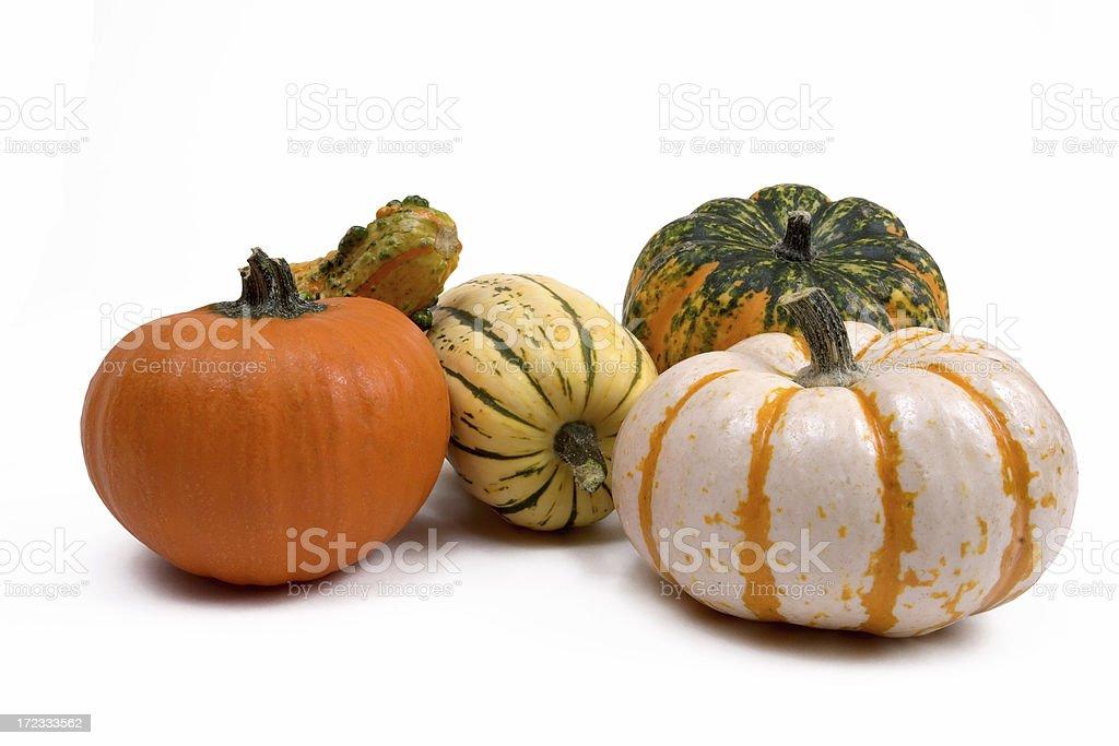Decorative Gourds stock photo