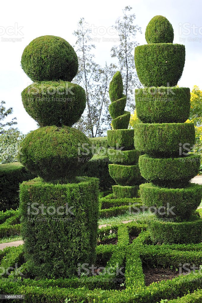 Decorative green park - Botanical garden Funchal, Madeira royalty-free stock photo
