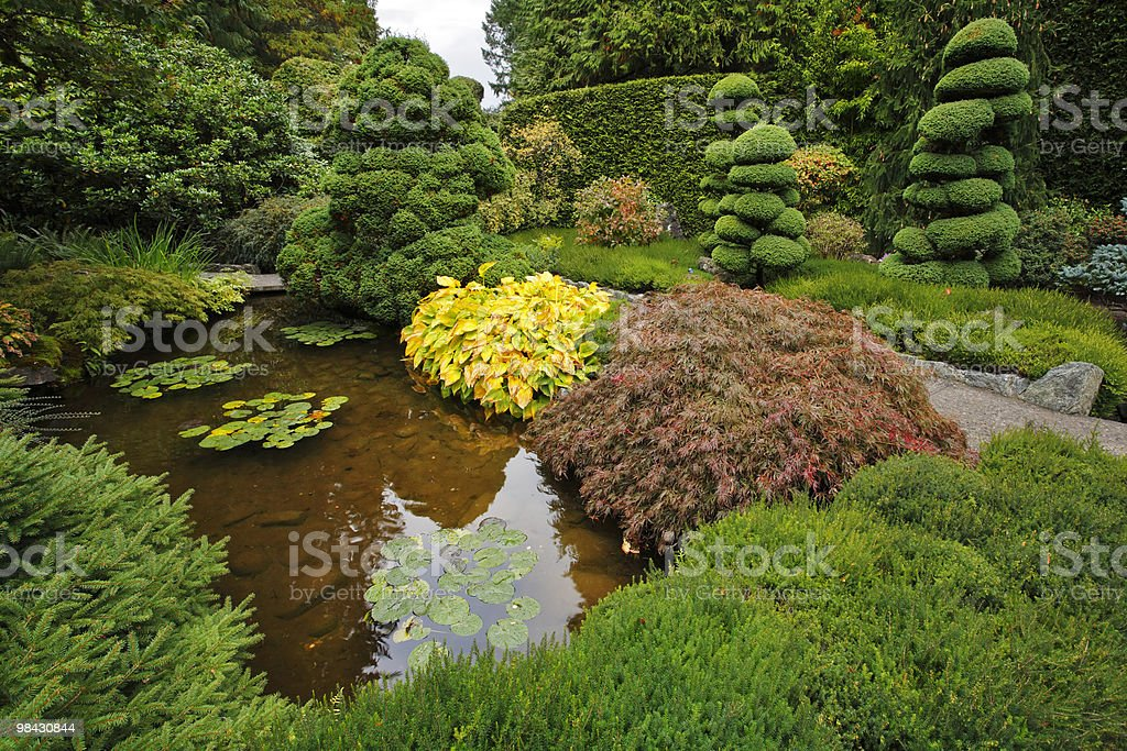 Decorative Japanese garden. royalty-free stock photo