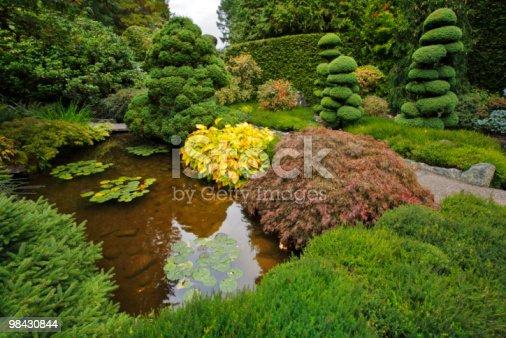 Decorativo Giardino Giapponese - Fotografie stock e altre immagini di Acqua