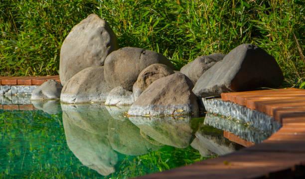 Decorative koi pond in a garden stock photo