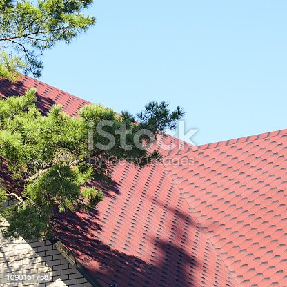 Decorative metal tile on a roof. Types of a roof of roofs. Near conifer.