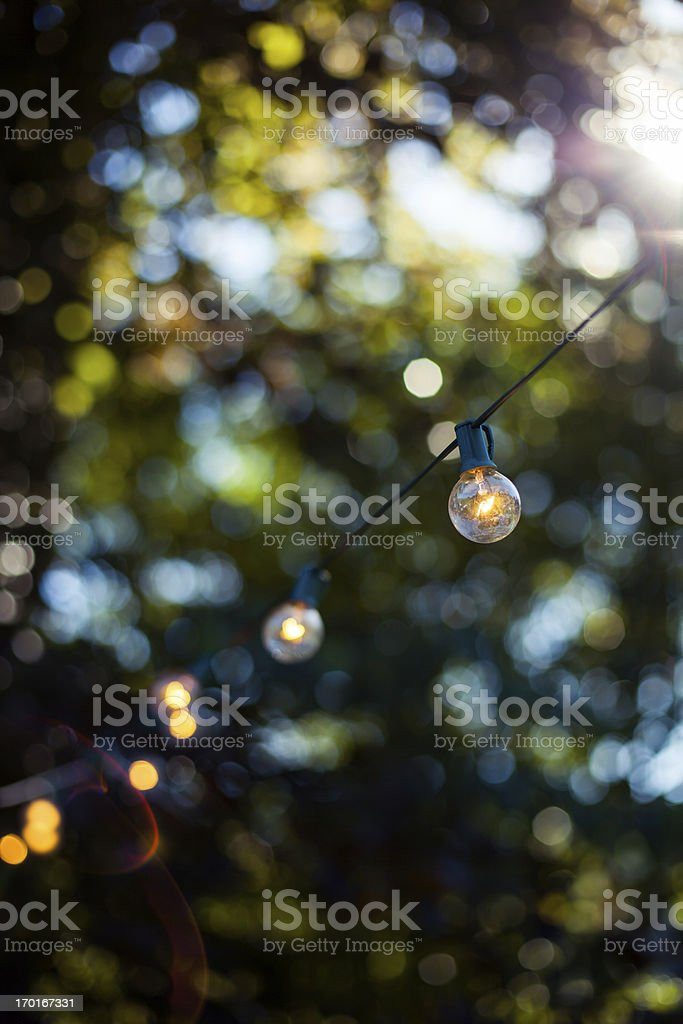 Decorative party lights in garden stock photo