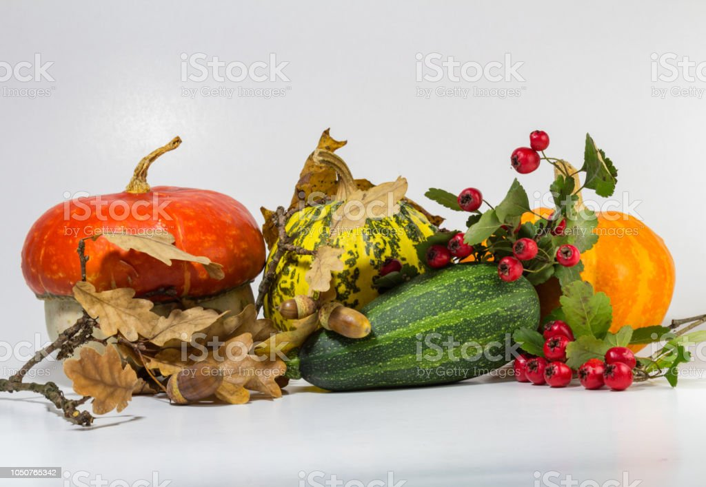 Decorative pumpkin with acorn, brier isolated on white background stock photo