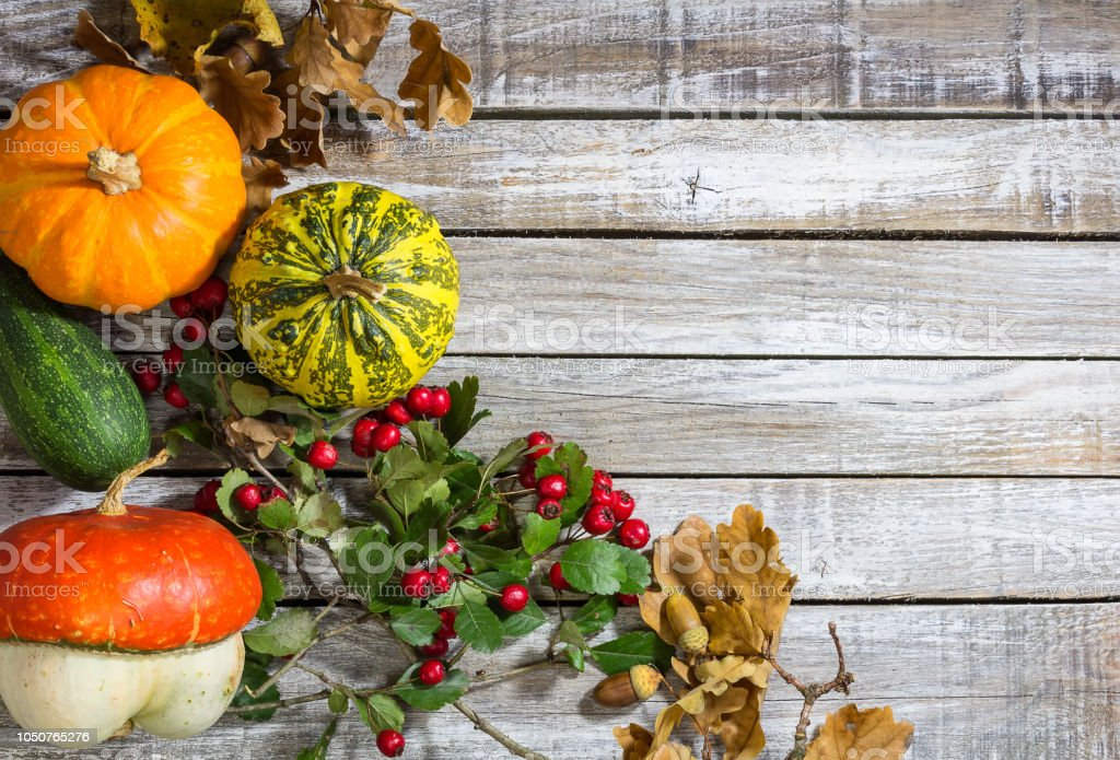 Decorative pumpkin with acorn, brier on wood background stock photo