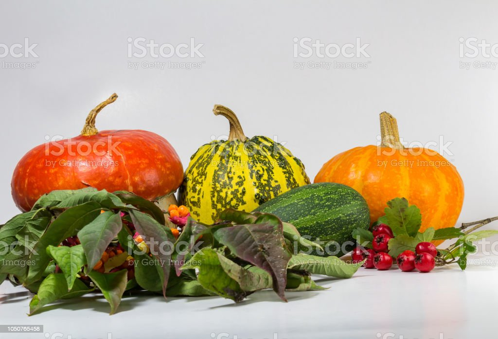 Decorative pumpkin with brier, acorn isolated on white background stock photo