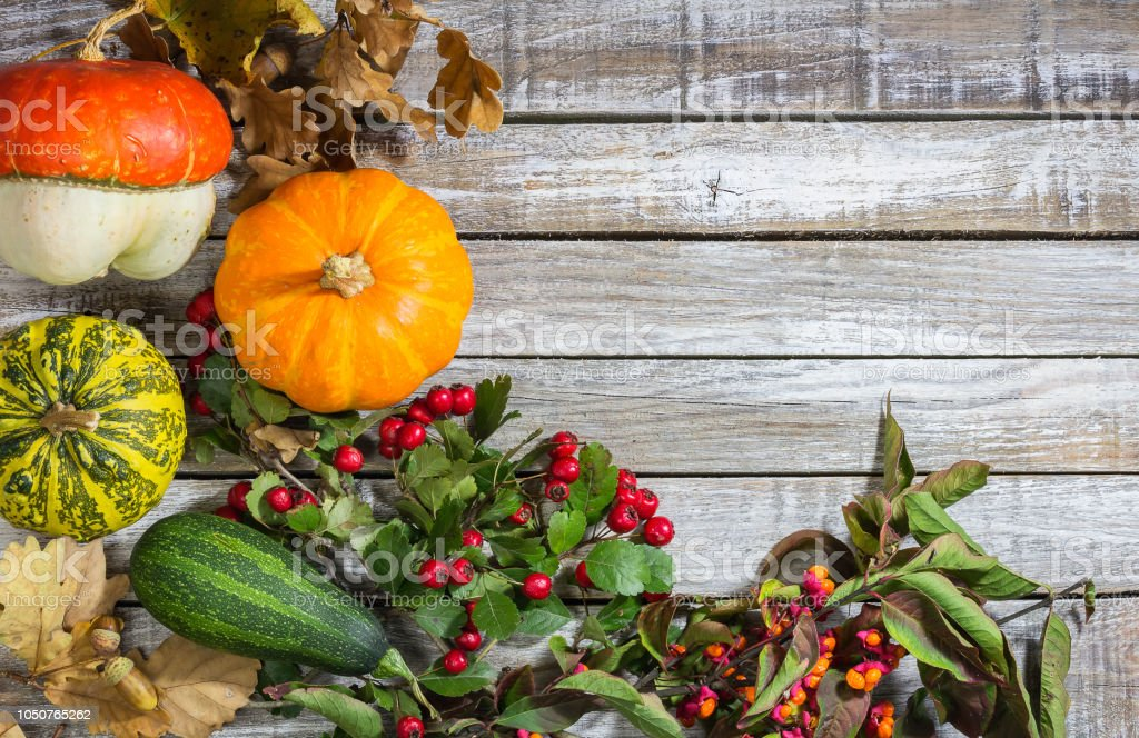 Decorative pumpkin with brier, acorn on wood background stock photo