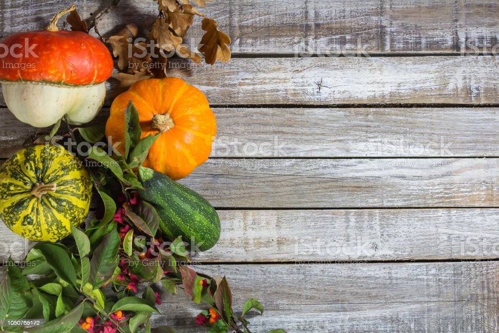 Decorative pumpkin with brier, acorn on wood desk stock photo