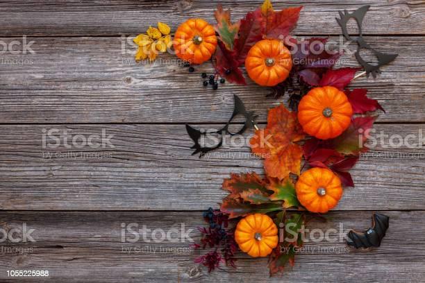 Decorative pumpkins autumn leaves black cat mask and batshaped top picture id1055225988?b=1&k=6&m=1055225988&s=612x612&h=xrpomv5mutzvvqiwadjpbbpngxeo biaxcilmuurn3i=