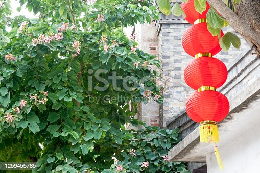 istock Decorative red lantern hanging on a tree with brick wall and bauhinia tree background,China 1259455765