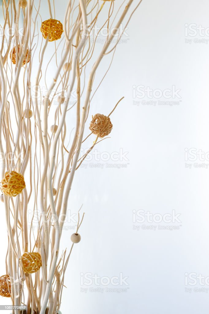 Decorative Reeds On White Background - Home Decor stock photo