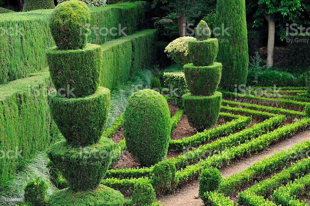 Jolie green park-Jardin botanique de Funchal, Madère - Photo