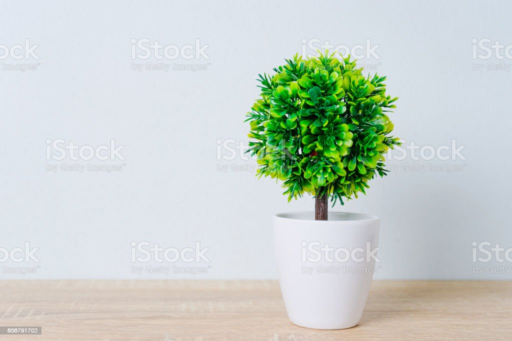Decorative tree in flower pot on wooden table stock photo
