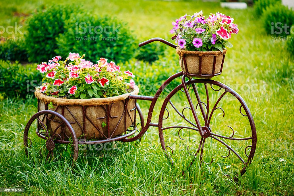 Декоративные Винтажная модель Старый велосипед оборудованный корзина цветы панцирник стоковое фото
