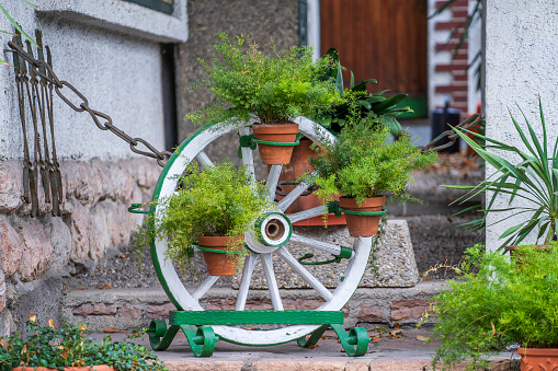 Decorative wheel from a cart with flowerpots in the courtyard of a mountain village at summer day in Alps Austria, travel and nature concept