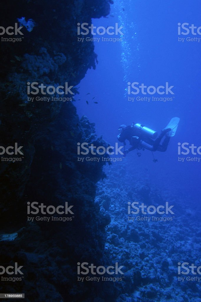 Deep blue diving royalty-free stock photo