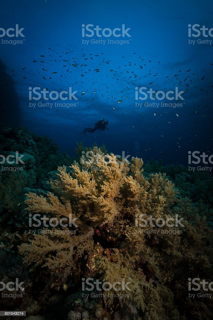 deep blue stock photo