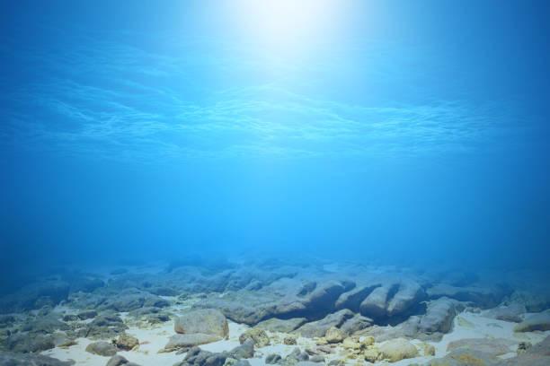 Fond sous-marin mer ou océan bleu profond. - Photo