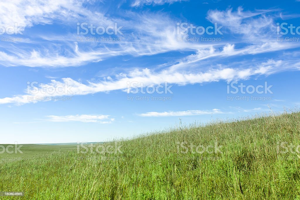 Deep Blue Sky White Puffy Clouds over Green Grass Hills royalty-free stock photo