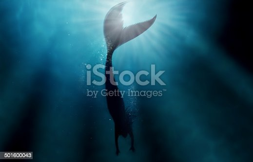 A silhouette shot of a mermaid swimming in solitude in the deep blue sea - ALL design on this image is created from scratch by Yuri Arcurs' team of professionals for this particular photo shoothttp://195.154.178.81/DATA/i_collage/pi/shoots/783469.jpg