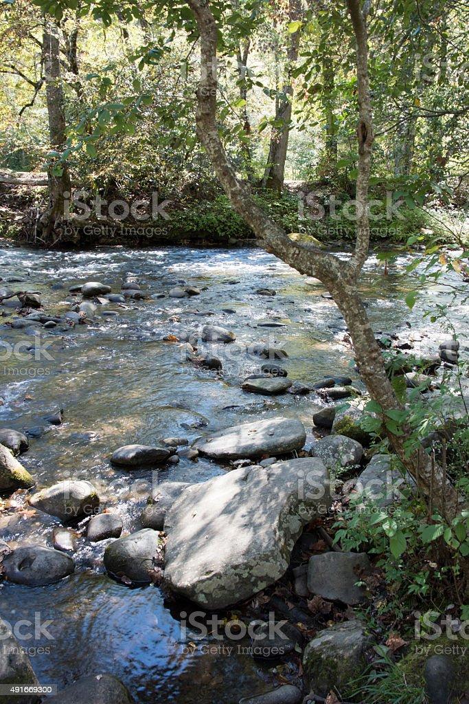 Deep Creek in Bryson City NC stock photo