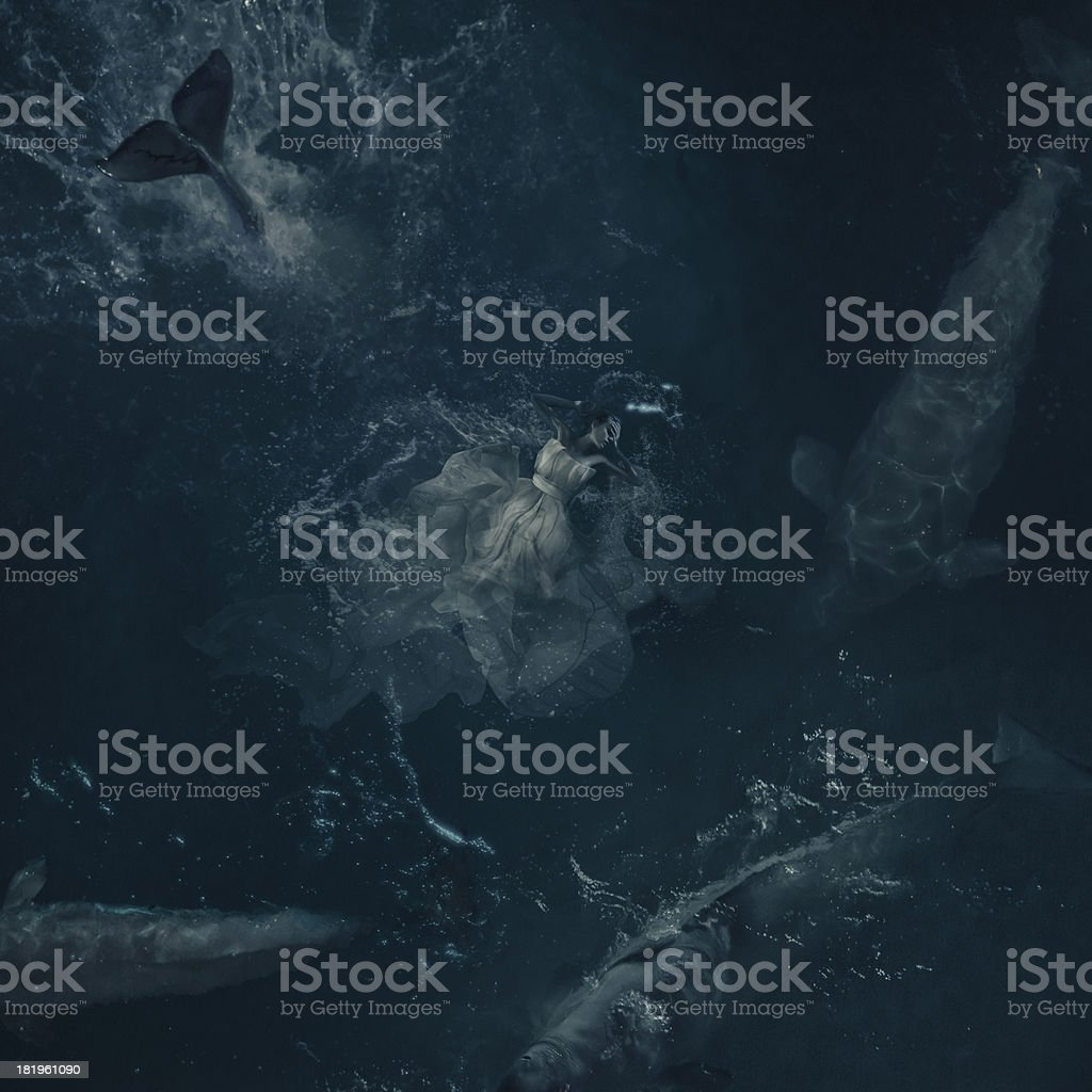 deep dreams in ocean royalty-free stock photo