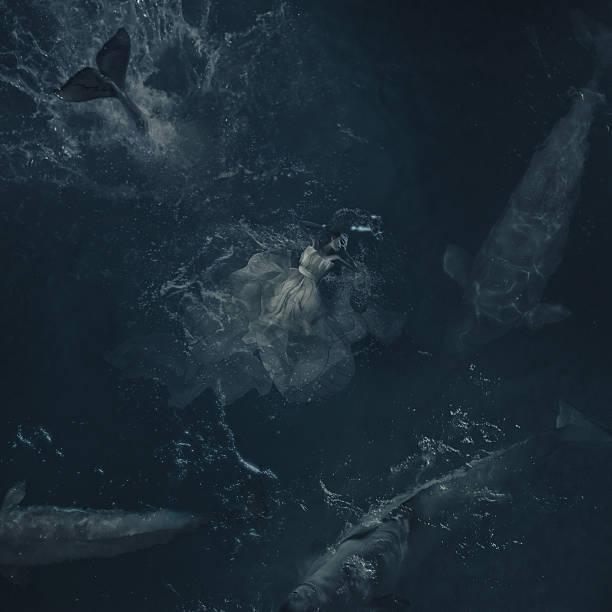 große träume im meer - ozean kunst stock-fotos und bilder