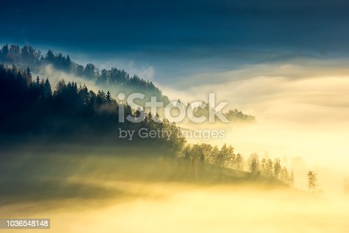 istock deep fog above the valley at sunrise 1036548148