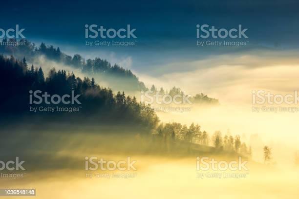 Deep fog above the valley at sunrise picture id1036548148?b=1&k=6&m=1036548148&s=612x612&h=xujpvj5gys3d fediiamgni5vkaft4jy5isrvviapjy=
