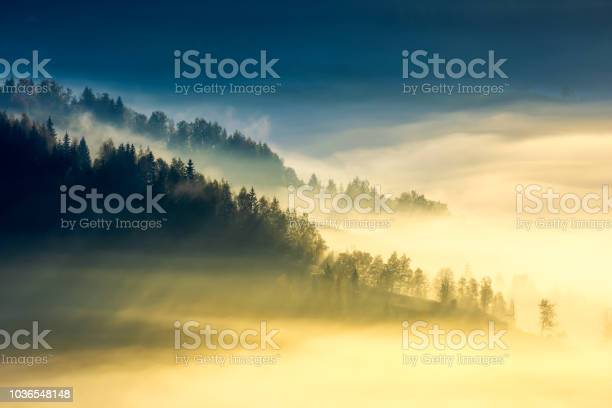 Photo of deep fog above the valley at sunrise