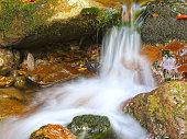 Beautiful mountain brook in Risnjak National Park, Gorski Kotar, Croatia