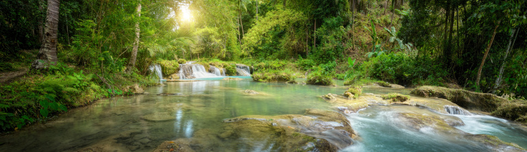 1131408581 istock photo Deep forest waterfall  National Park. Panoramic view 505722859