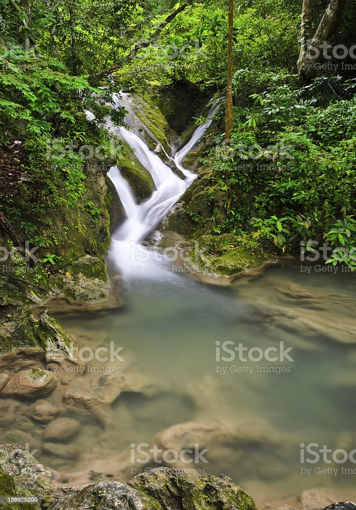 Deep forest waterfall royalty-free stock photo