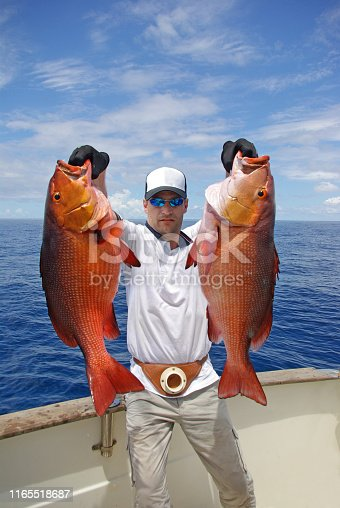 istock Deep sea fishing, catch of fish, snapper fish 1165518687