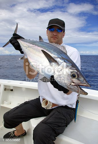 istock Deep sea fishing, catch of fish, Tuna fish 1165520352