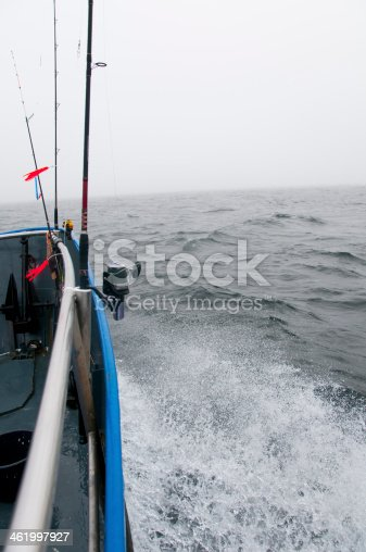 932662672 istock photo Deep sea fishing. The catch of cod. 461997927