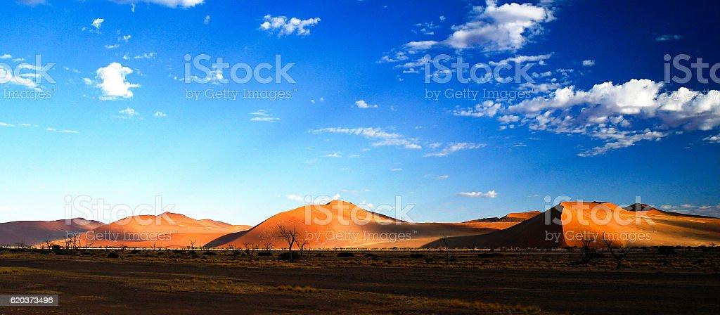 Deep shadows on Sossusvlei dunes at sunrise in Namib desert zbiór zdjęć royalty-free