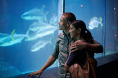 Shot of a young couple looking at the fish in an aquariumhttp://195.154.178.81/DATA/i_collage/pi/shoots/783341.jpg