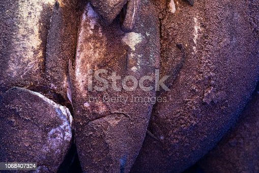 932662672istockphoto Deep-sea fish just caught with sand, colse up. 1068407324