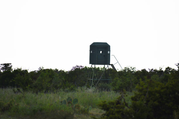 Deer Blind deer stand on top of a mountain hunting blind stock pictures, royalty-free photos & images