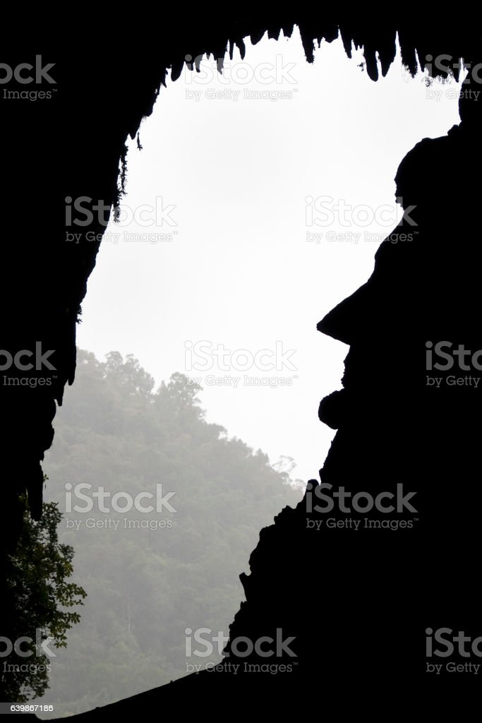 Deer Cave Lincoln Face - Borneo - Malaysia stock photo