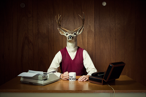 A retro business man with the head of a deer / stag sits in his vintage wood paneled 1970's style office, holding a mug that says