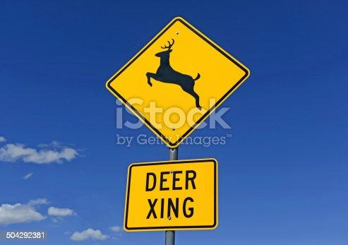 istock Deer crossing warning sign on road 504292381
