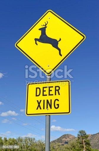 istock Deer crossing warning sign on road 504292385