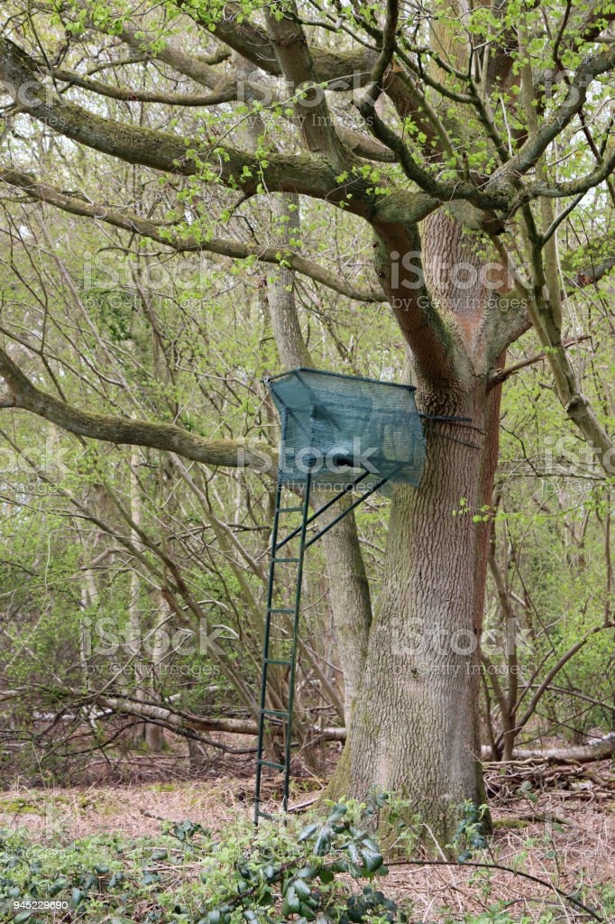 Deer culling high seat stock photo